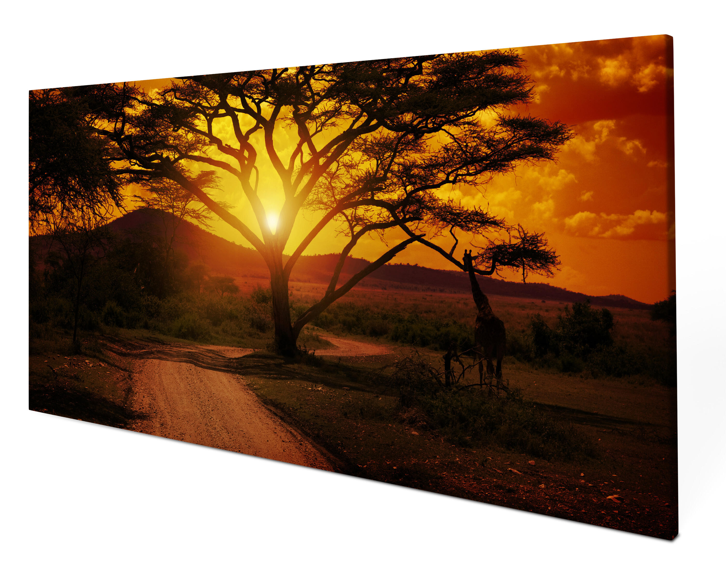 leinwandbild afrika sonnenuntergang panoramabild kunstdrucke m0001 ebay. Black Bedroom Furniture Sets. Home Design Ideas